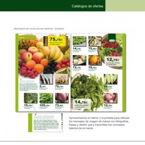ICNorte_Manual20100910-63